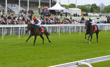 Golden Horn beats Jack Hobbs in the Dante Stakes