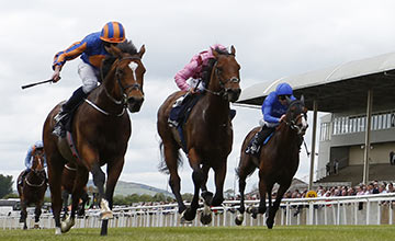 Latest Racing News: O'Brien: right move not to run Gleneagles in Sussex Stakes
