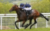 Goodwood: Hat winner Stars storms into St Leger picture