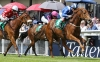 Weld sprinter Mustajeeb unlikely to run in July Cup