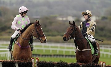 Nichols Canyon and stable mate Faugheen