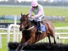 Long Dog the choice of Ruby Walsh