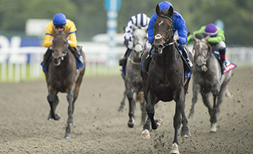 Jack Hobbs: receives 3lb from Simple Verse in a classy renewal