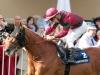 Prince Gibraltar landed the Grosser Preis von Baden on Sunday