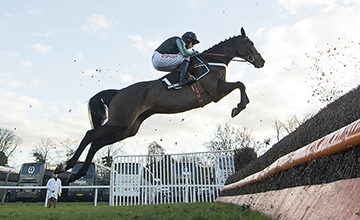 Altior: three from three over fences this season