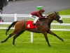 Elm Park struck at the top level in the Racing Post Trophy