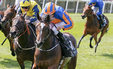 Roly Poly - Ryan moore wins from Kilmah