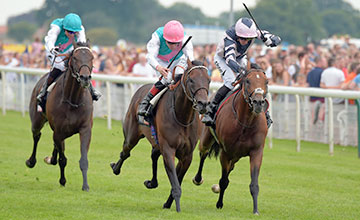 Centre is TIME TEST with P Smullen 1st from right MONDIALISTE 2nd in Sky Bet York stakes at York 23-7-16.