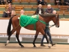 Lot47tcb0549tattersalls