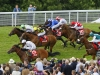 Intrinsic nearest wins the 2014 Stewards' Cup It may prove unwise to underestimate him at stud