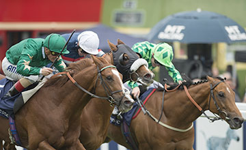 Tullius (centre) beats Decorated Knight (near) and Custom Cut in the Diomed Stakes