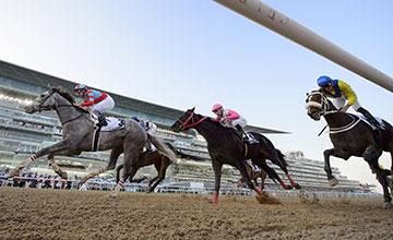 Lani (Yutaka Take) wins the UAE Derby