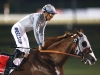 California Chrome nasal strip permitted by the Emirates Racing Association