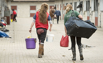 Stable staff go about their duties