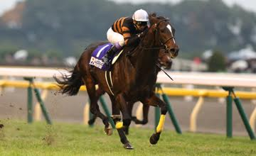 Kitasan Black winning the Japan Cup 2016 under Yutake Take