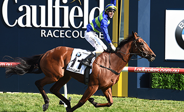 MELBOURNE, AUSTRALIA - OCTOBER 15: Nick Hall riding Jameka celebrates on the line to win Race 8, BMW Caulfield Cup during Caulfield Cup Day at Caulfield Racecourse on October 15, 2016 in Melbourne, Australia. (Photo by Vince Caligiuri/Getty Images)