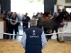 "Tattersalls ""conscious larger numbers were challenging for purchasers and vendors alike"" said chairman Edmond Mahony"