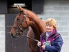 The €90000 Dandy Man filly with Mary Davison of consignor Catherinestown Stud Farm
