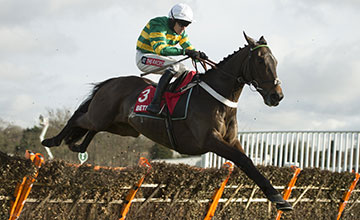 The winner Buveur D'Air (Barry Geraghty)
