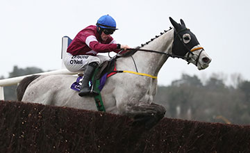 Disko and Sean Flanagan wins the Flogas Novice Chase (Grade 1)Leopardstown Photo: Patrick McCann 12.02.2017