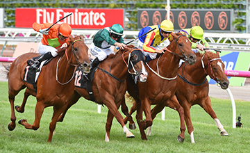 (L-R) Corey Brown riding Terravista defeats Dwayne Dunn riding Star Turn, Hugh Bowman riding Spieth and Brad Rawiller riding Flamberge in Race 8, the Black Caviar Lightning during Melbourne Racing at Flemington Racecourse on February 18, 2017 in Melbourne