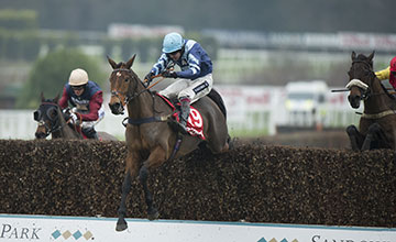 Pete The Feat (Aidan Coleman) jumps the last