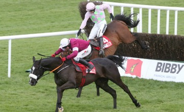 Don Cossack Punchestown 360x220