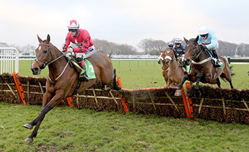 The New One in winning action at Haydock