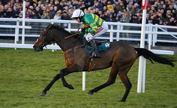 Unowhatimeanharry: always galloped and always jumped (see story, right)