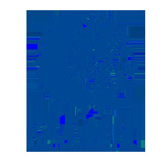 Go to Rad Beograd Team page