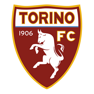 Go to Torino Team page