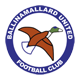 Go to Ballinamallard U Team page