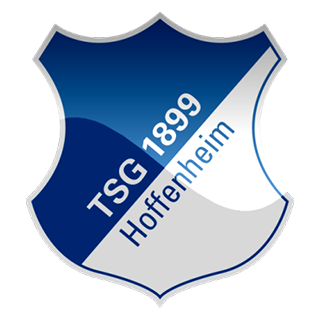 Go to Hoffenheim Team page