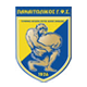 Go to Panetolikos Team page