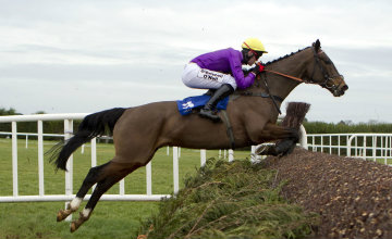 Lord Windermere