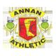 Go to Annan Team page