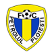 Go to Petrolul Ploiesti Team page