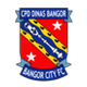 Go to Bangor City Team page
