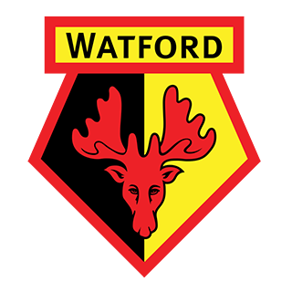 Go to Watford Team page