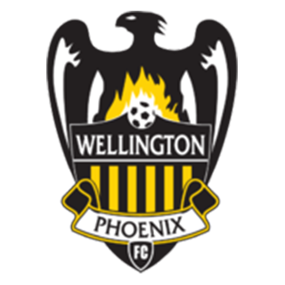 Go to Wellington Team page