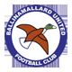 Go to Ballinamallard U Team page