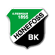 Go to Honefoss Team page