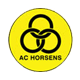 Go to AC Horsens Team page